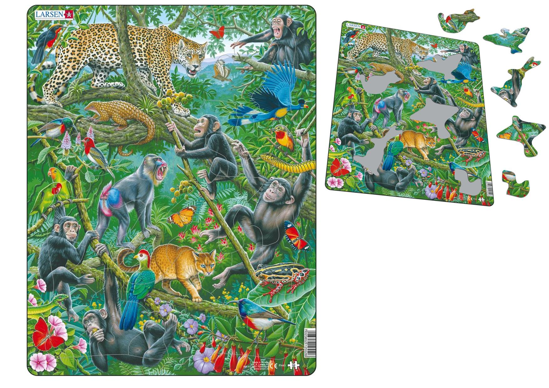 African Rain Forest Puzzle