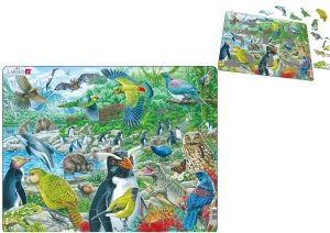 New Zealand Wildlife Puzzle