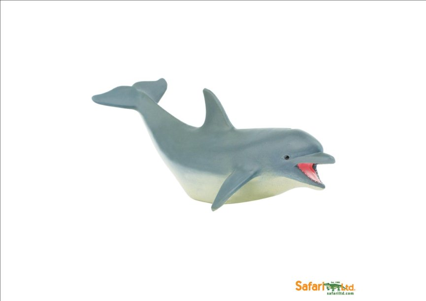 (SP) Dolphin Adult (3 I)